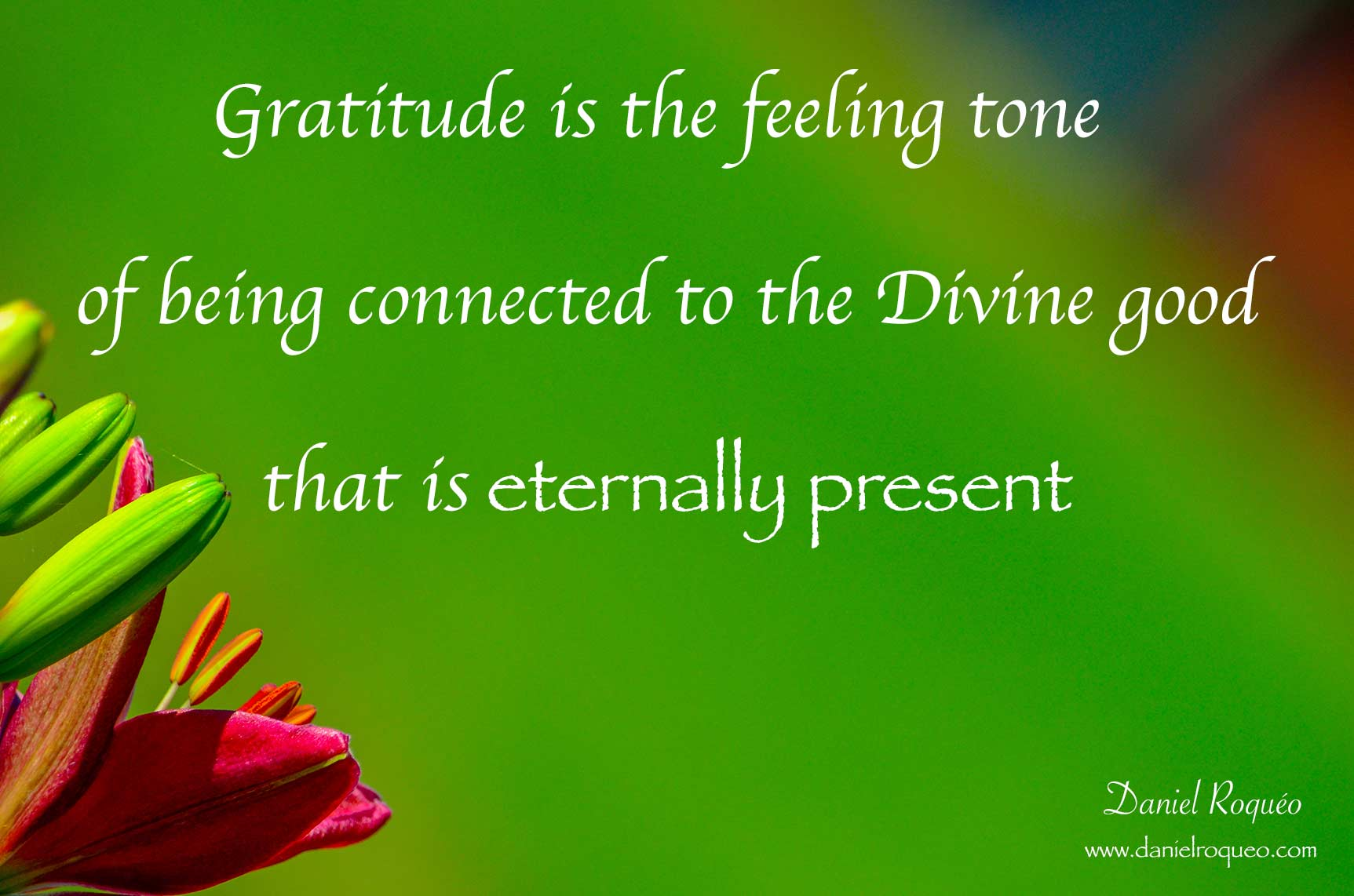 gratitude is the feeling tone of being connected with the good that is eternally present