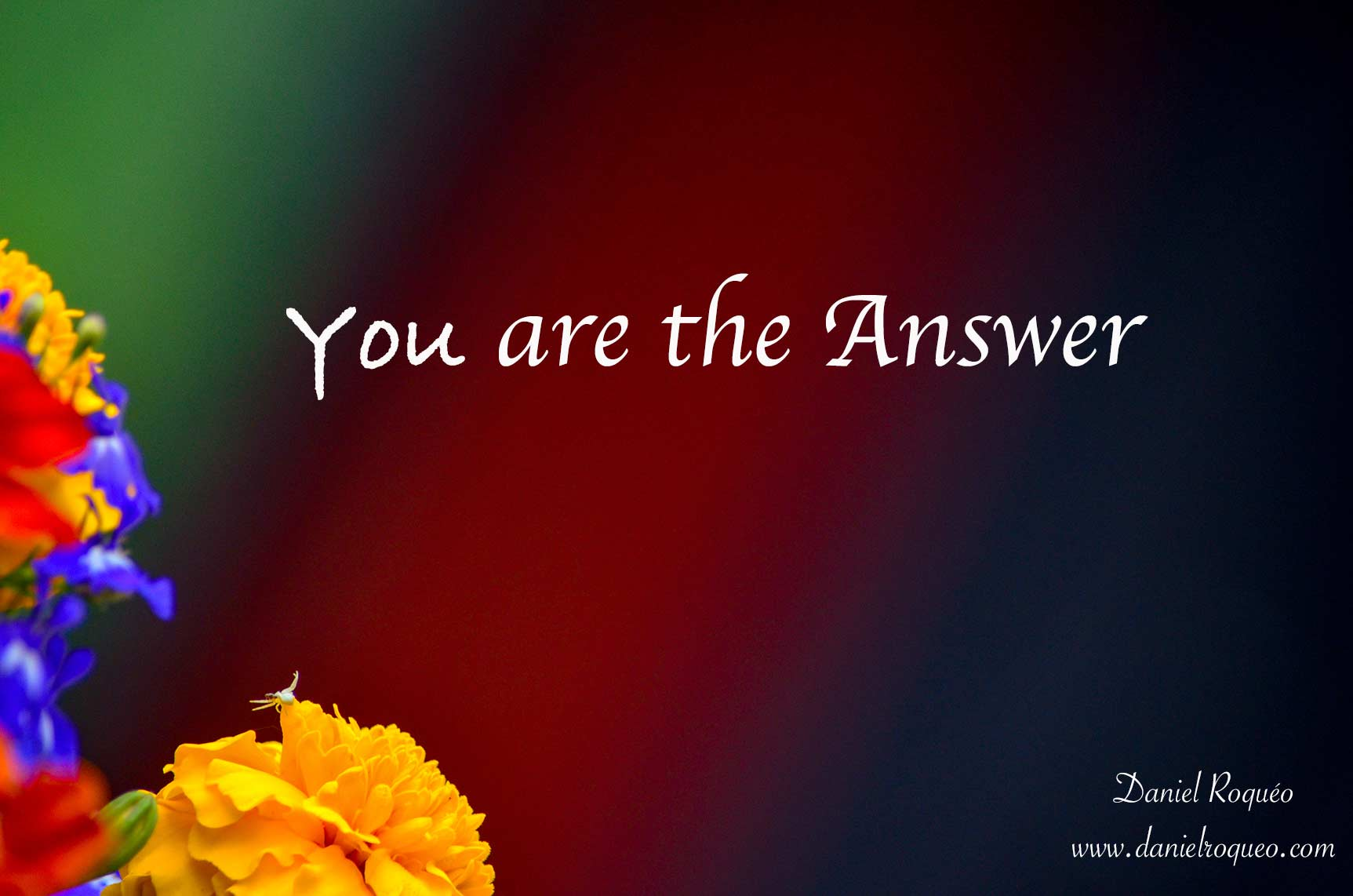 Spiritual counseling is about you realizing that you are the answer