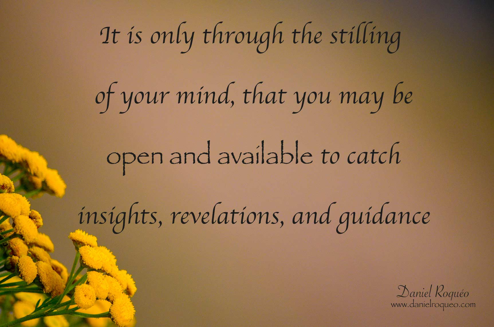 as you become still you make yourself open and available to catch insights and guidance