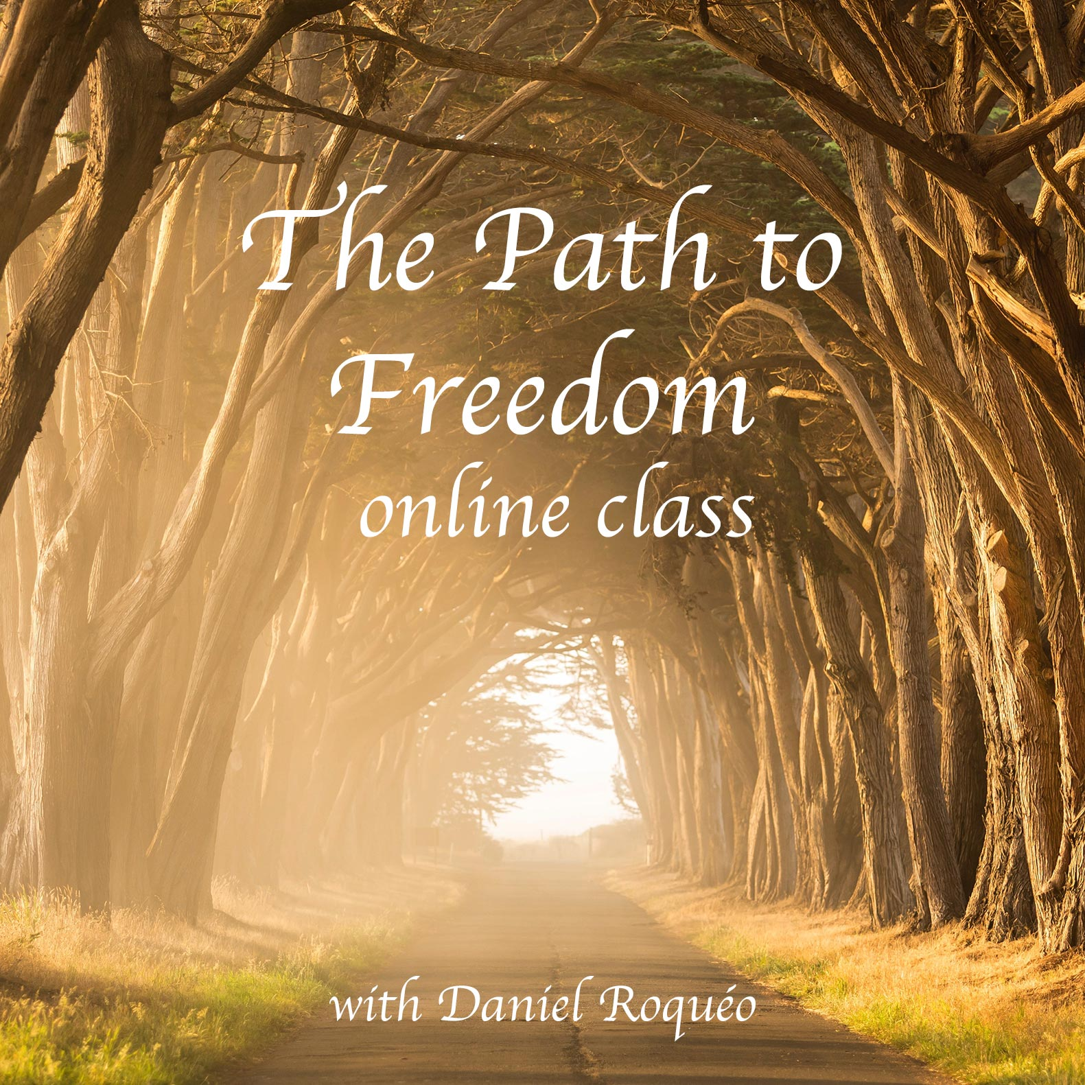 the path to freedom online class