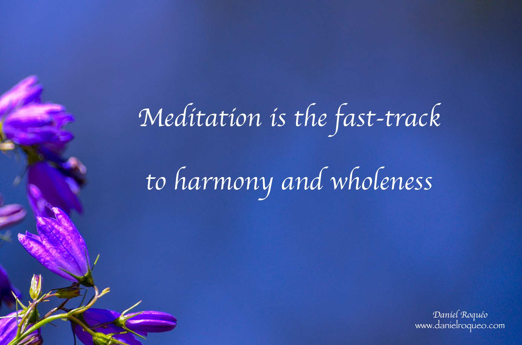 guided meditations is a fast track to inner peace and harmony